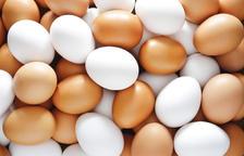 L'ou, amic o enemic?