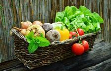 Cinc raons per menjar 'eco'