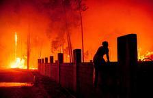 L'onada d'incendis deixa almenys 31 víctimes mortals i 7 desapareguts a Portugal