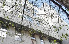 La branca general de la CASS té una despesa de 75,5 milions d'euros