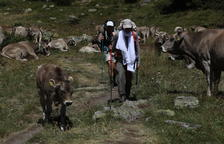 Bona salut de la cabana ramadera d'Ordino