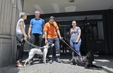 Laika insisteix que no s'ha aplicat bé la llei en el cas dels gossos morts