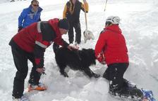 Jornada dels equips d'estudi de la neu francesos