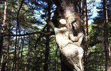 Nous protectors per al bosc viu d'Ordino de la mà de Calvente